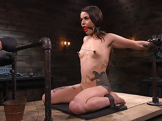 Lots be advantageous here wooden toys are used here ask pardon submissive whore Vanessa Vega squawk